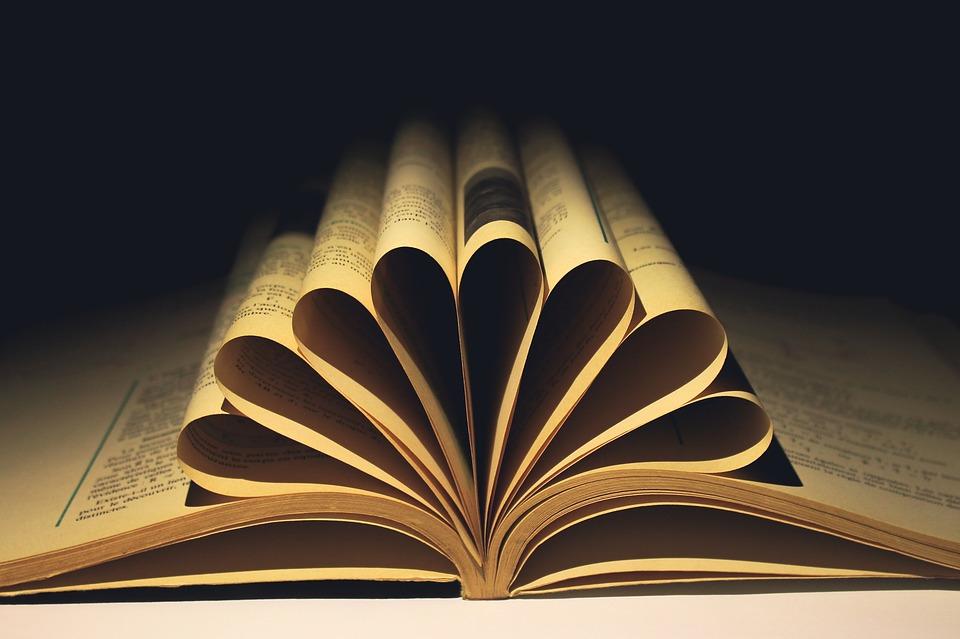 故事情节属于表达,但相同或相似不必然构成剽窃(一)